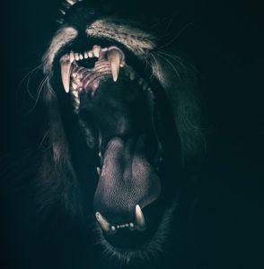 2 вида страха, и как от него избавиться.
